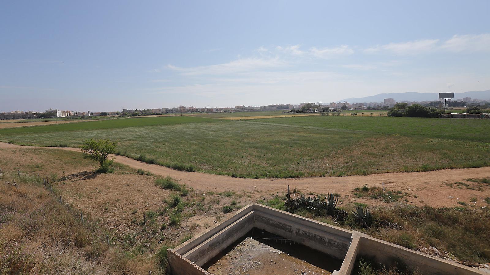Aquests són els terrenys de Son Bordoi, una Reserva Estratègica de Sòl que el Govern vol urbanitzar.