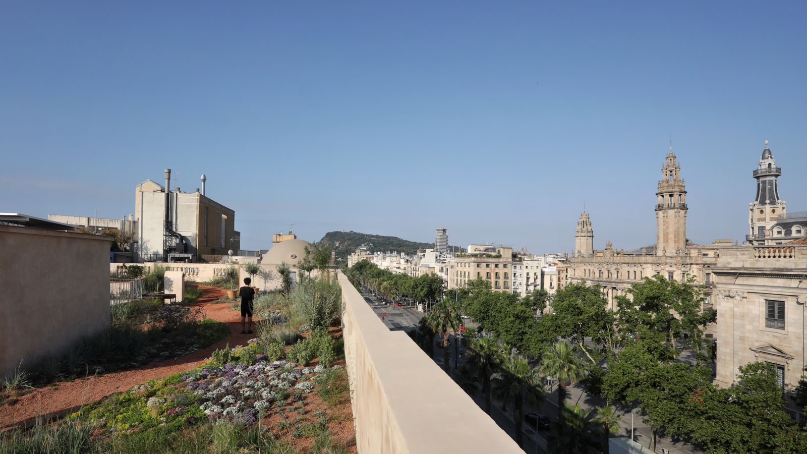 Un terrat de Barcelona ple de verd