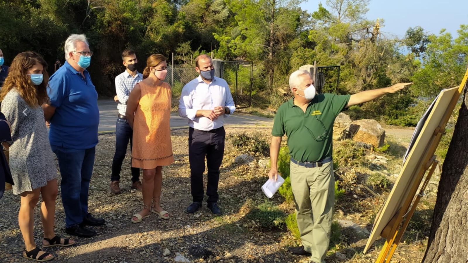 Primers dies de tasques d'emergència a la Serra de Tramuntana./ T.R.