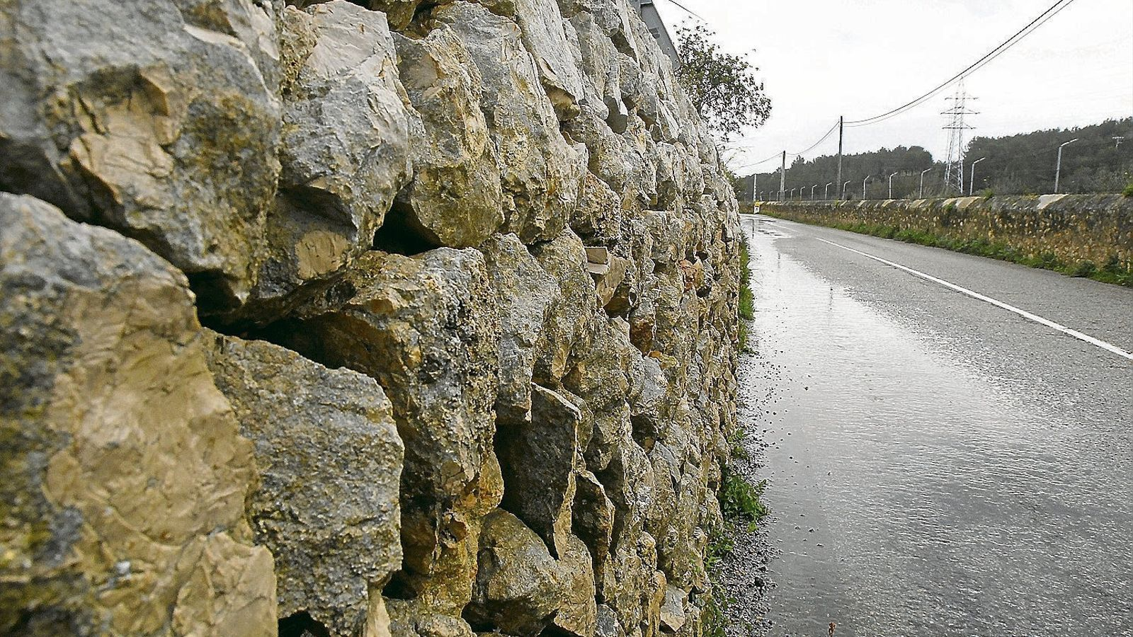 Els marges i la lluita                    contra l'erosió