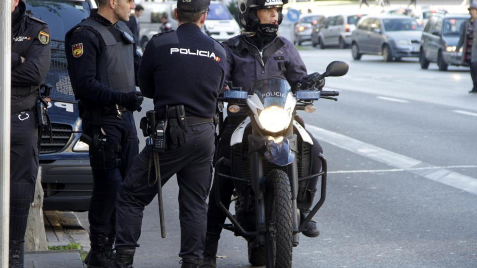 Agents de la Policía Nacional han detingut els dos lladres a Palma.