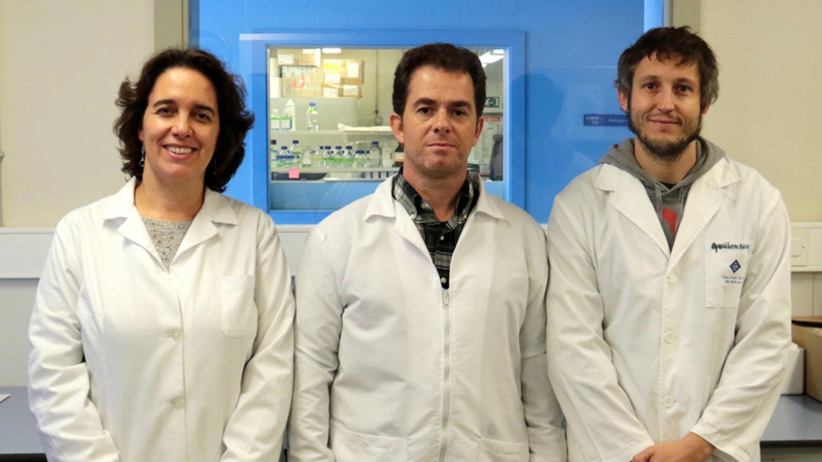 Investigadors del grup de recerca en Biologia Cel·lular del Càncer de la UIB.