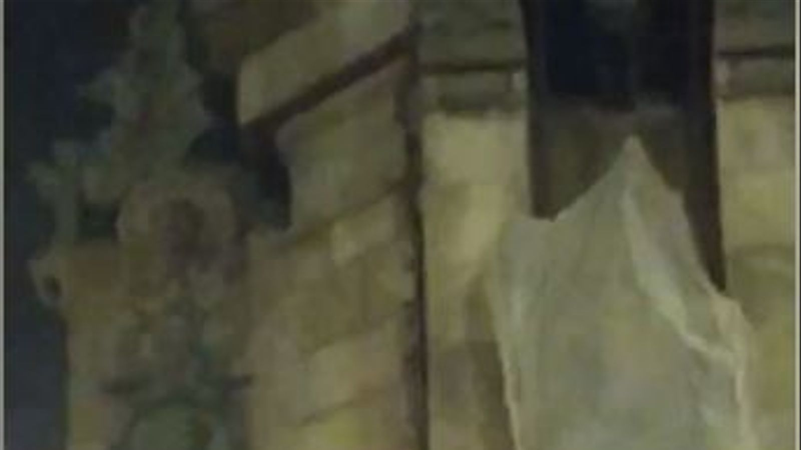 Crema un petit foc als peus de Colom i apareixen diferents pintades a l'estàtua