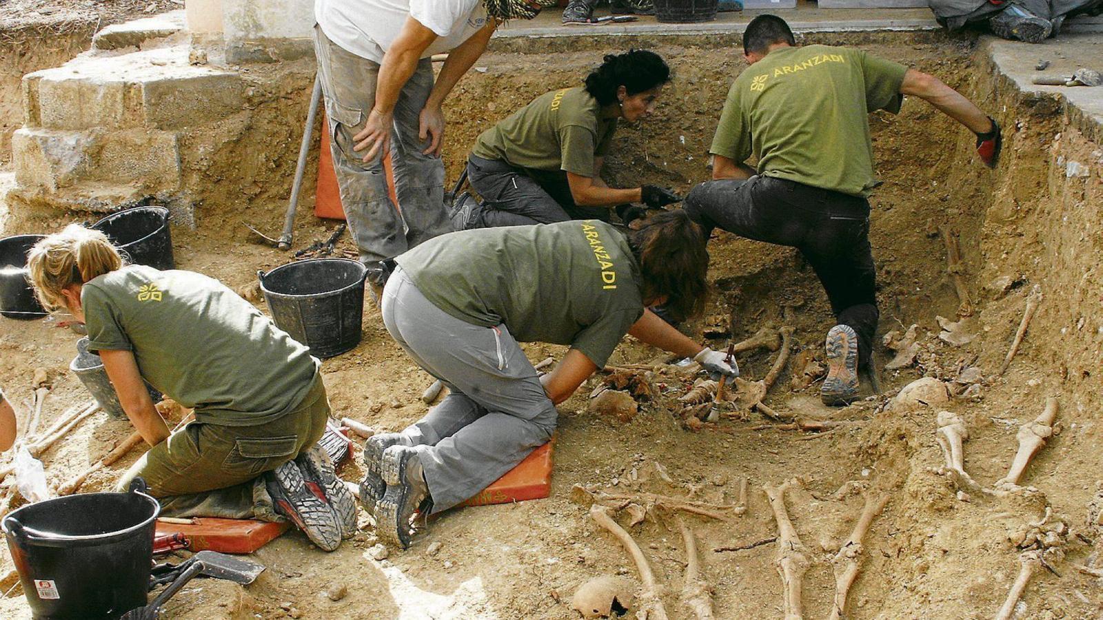 Les tasques per exhumar represaliats pel franquisme a la fossa de Porreres es podrien reprendre aquest estiu