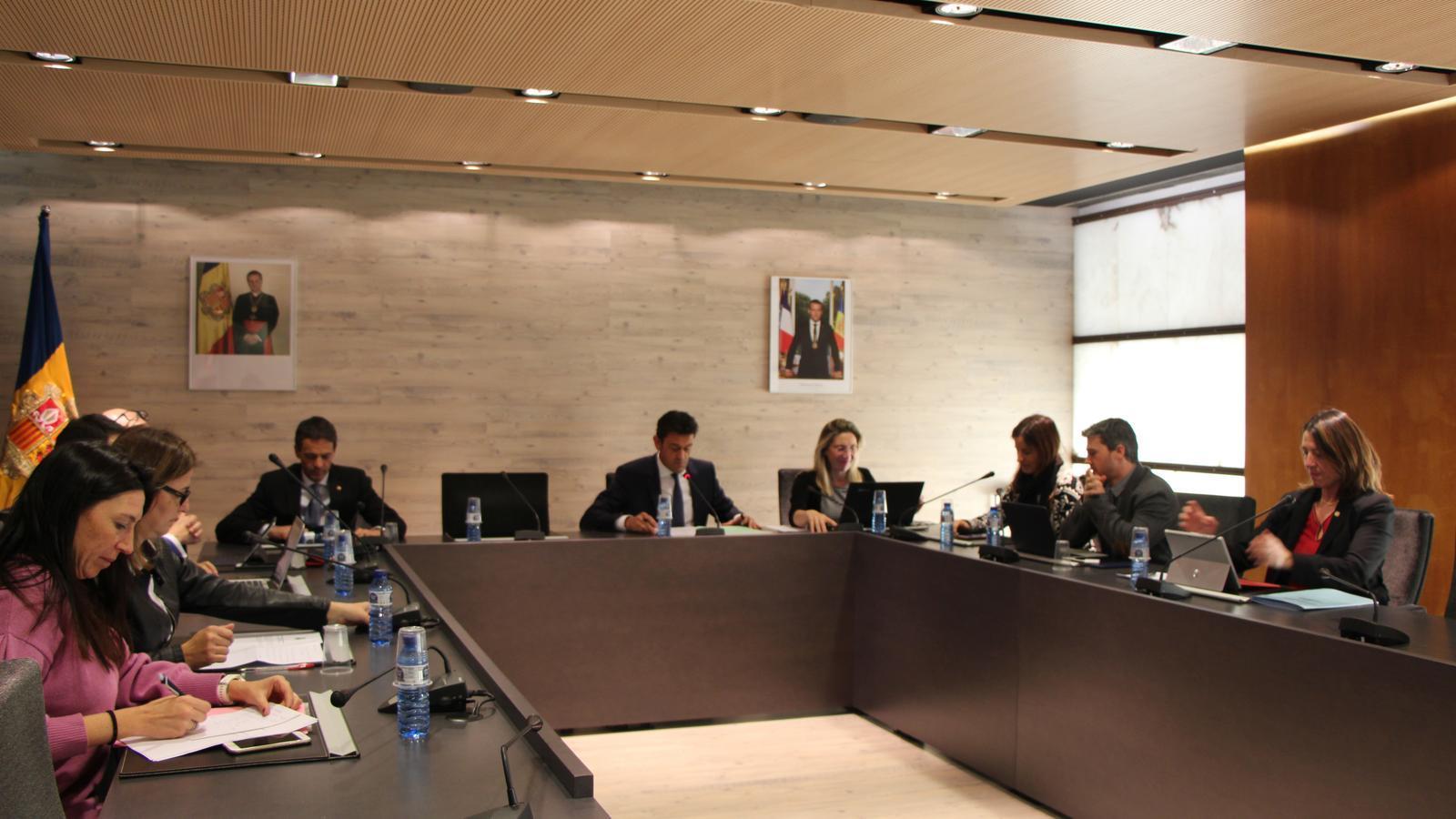 Instants de la sessió extraordinària del consell de comú. / A.S. (ANA)