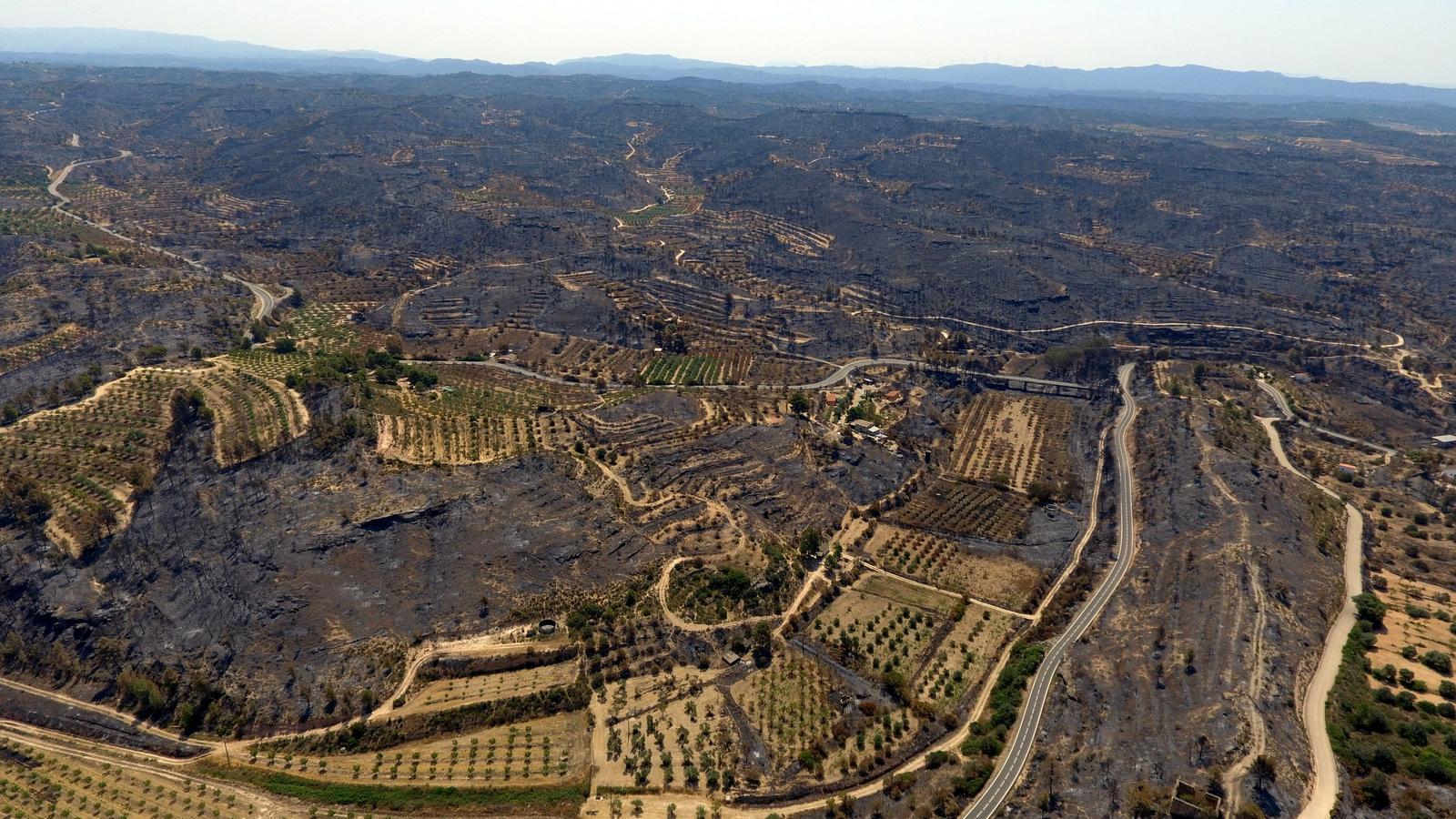 Pla de xoc, amb interrogants, per als afectats per l'incendi de la Ribera d'Ebre