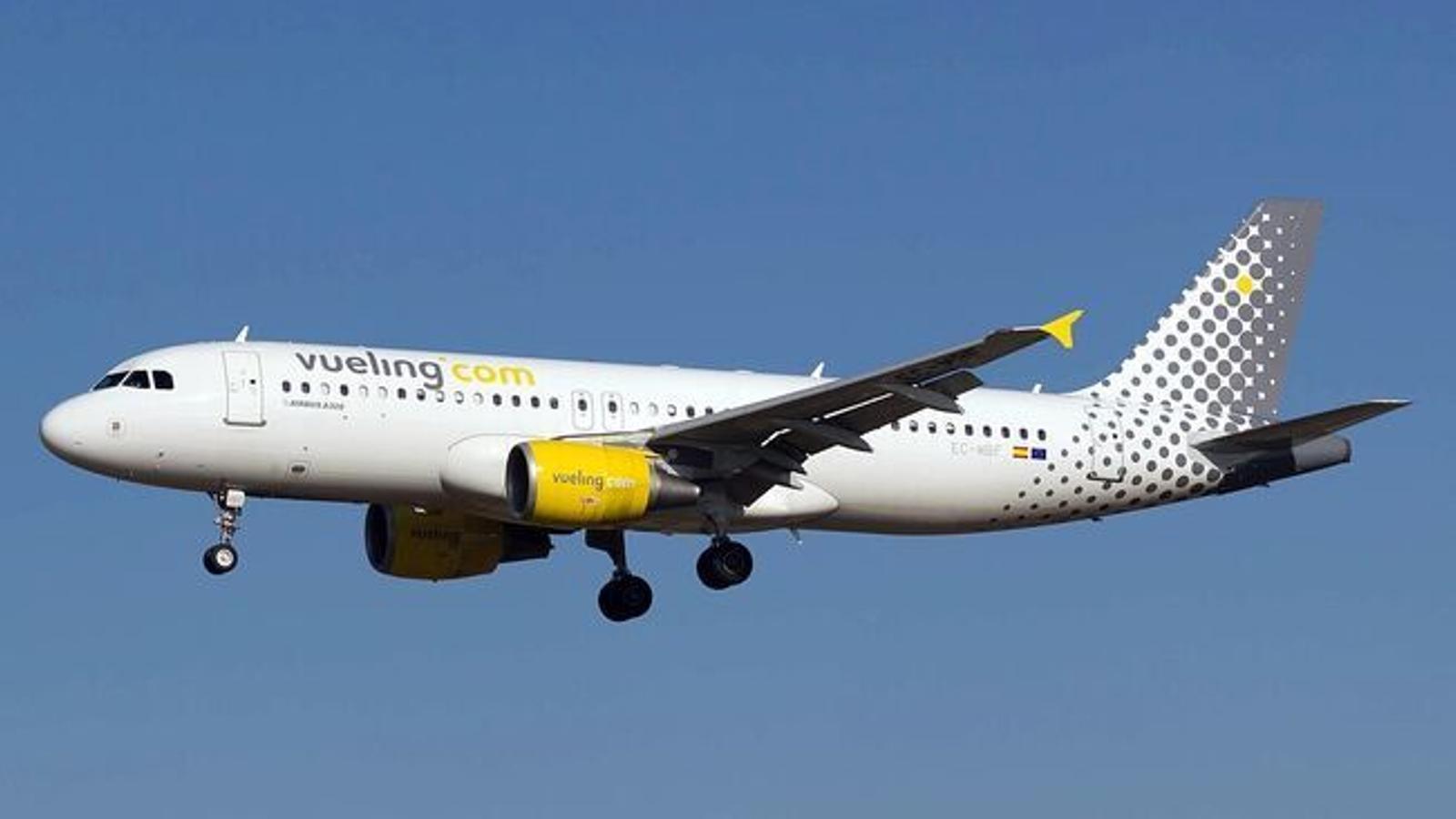 El vol ha pogut cobrir la ruta amb Barcelona amb una vintena de minuts de retard.