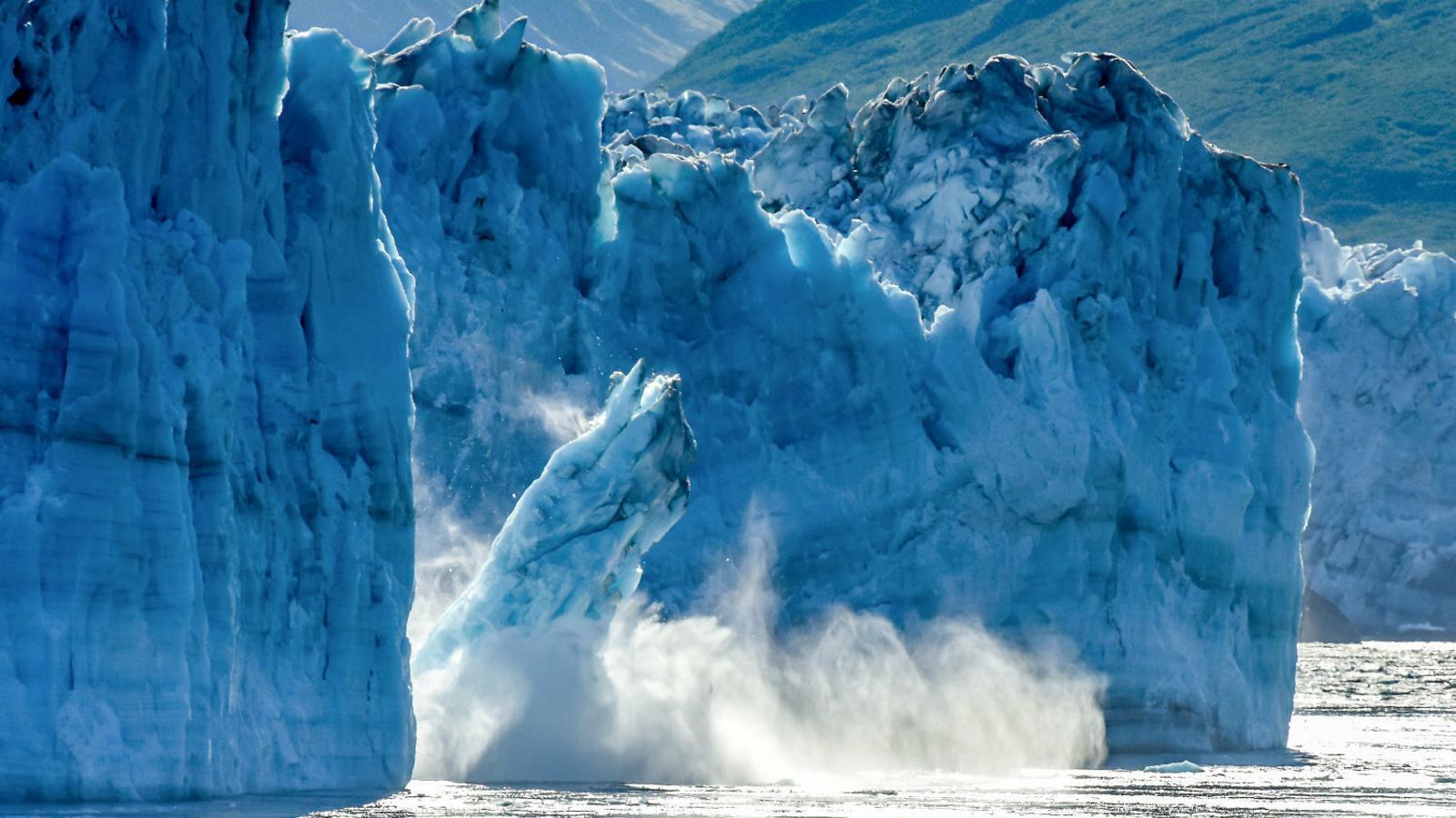 Un iceberg es desprèn de la glacera de Hubbard a Alaska, de 122 km de llarg, 11km d'ample i 180 metres d'alt.