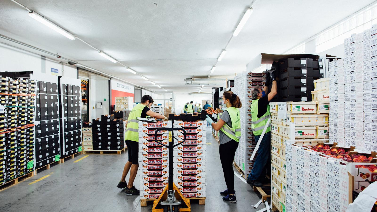 Voluntaris del Banc dels Aliments treballant en el repartiment de caixes de menjar.
