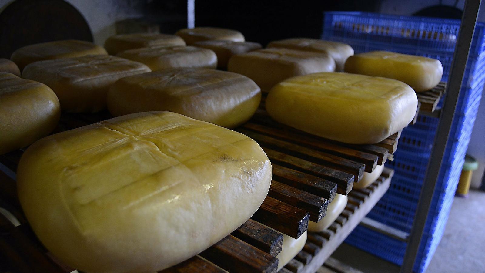 Un dels millors formatges del món