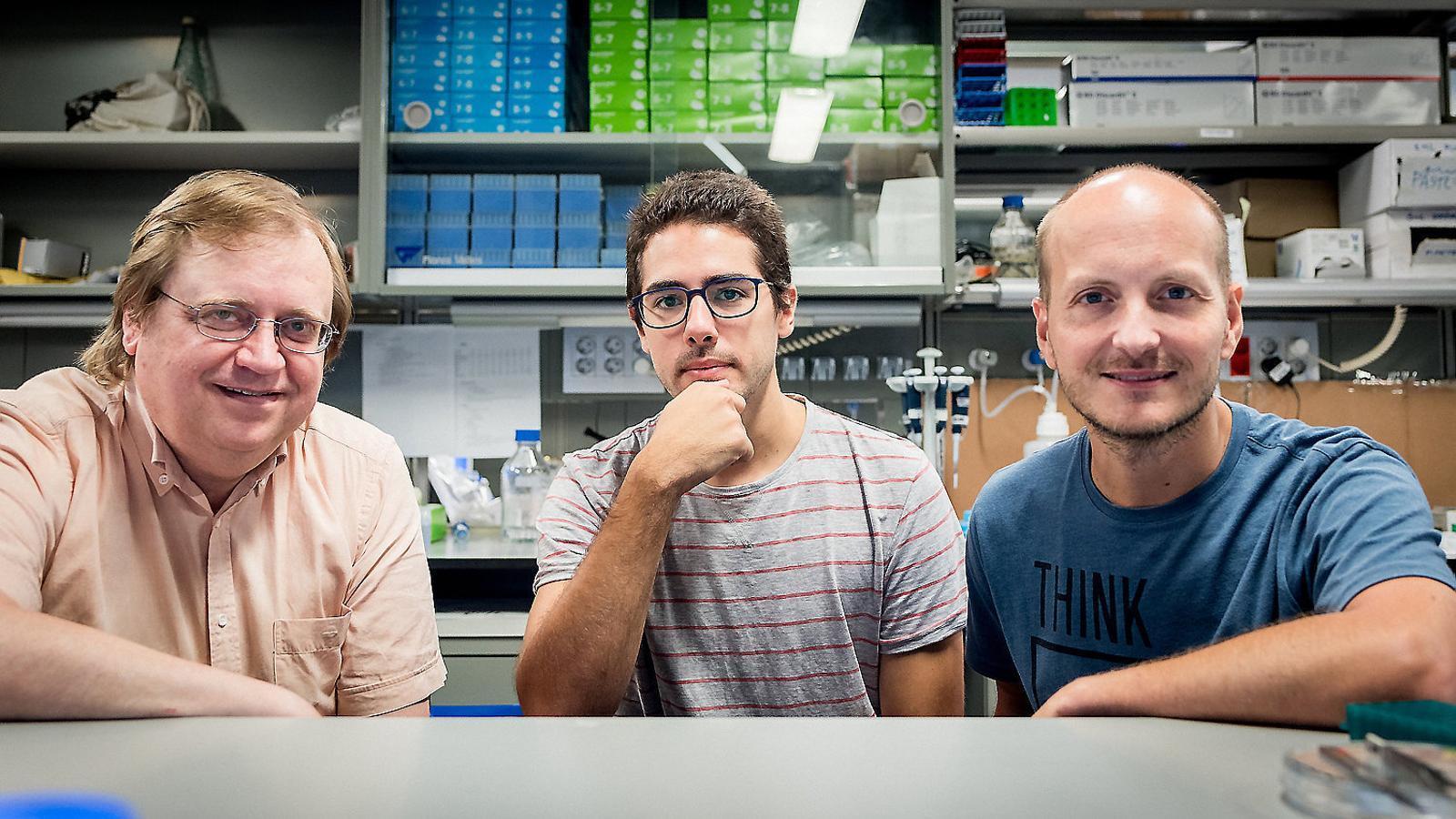 La física també vol curar el càncer de mama