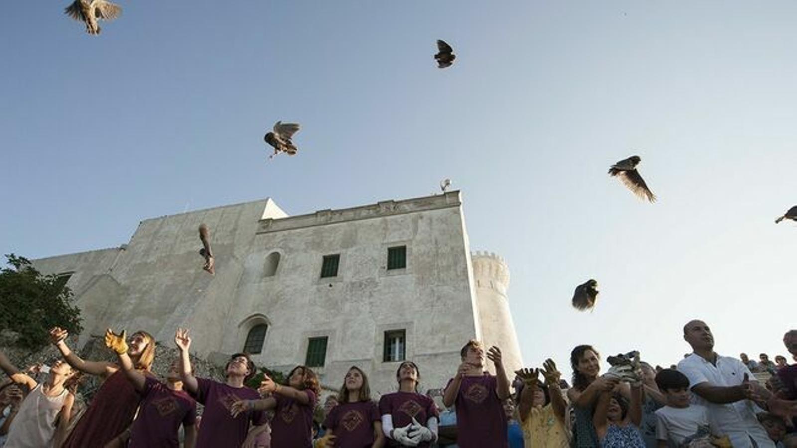 L'alliberament d'aus és fruit del treball que els voluntaris duen a terme a l'equipament situat a Ciutadella.