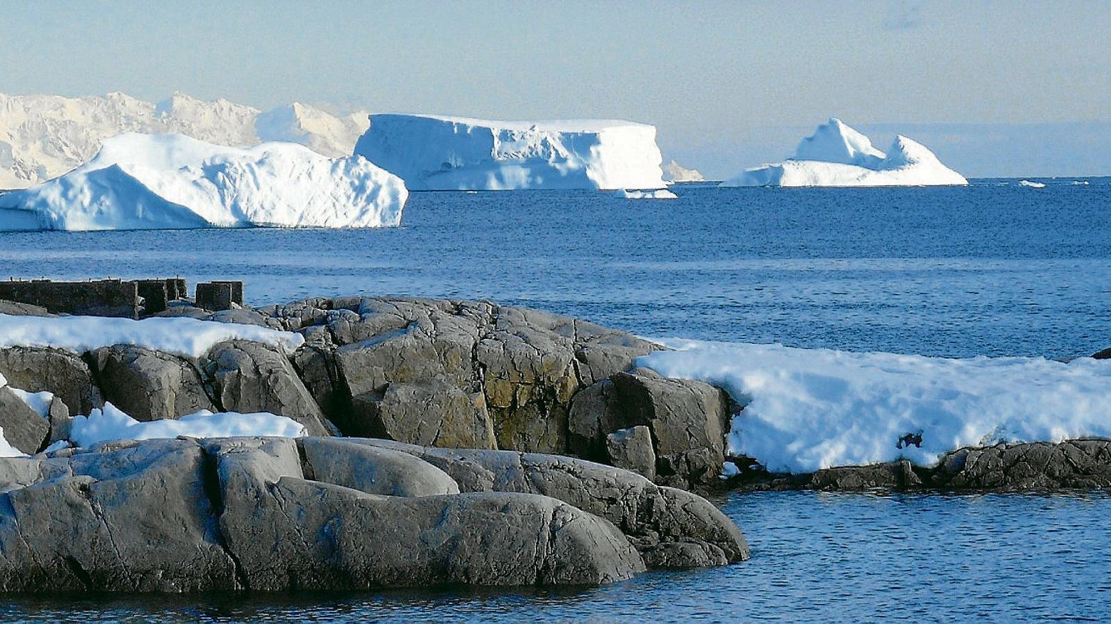 Fertilitzar oceans amb ferro  Per combatre el canvi climàtic