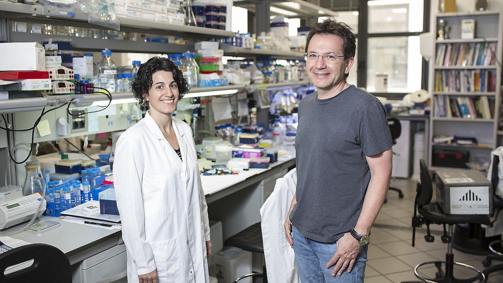 Raúl Méndez i Eulàlia Belloc, investigadors de l'IRB Barcelona.