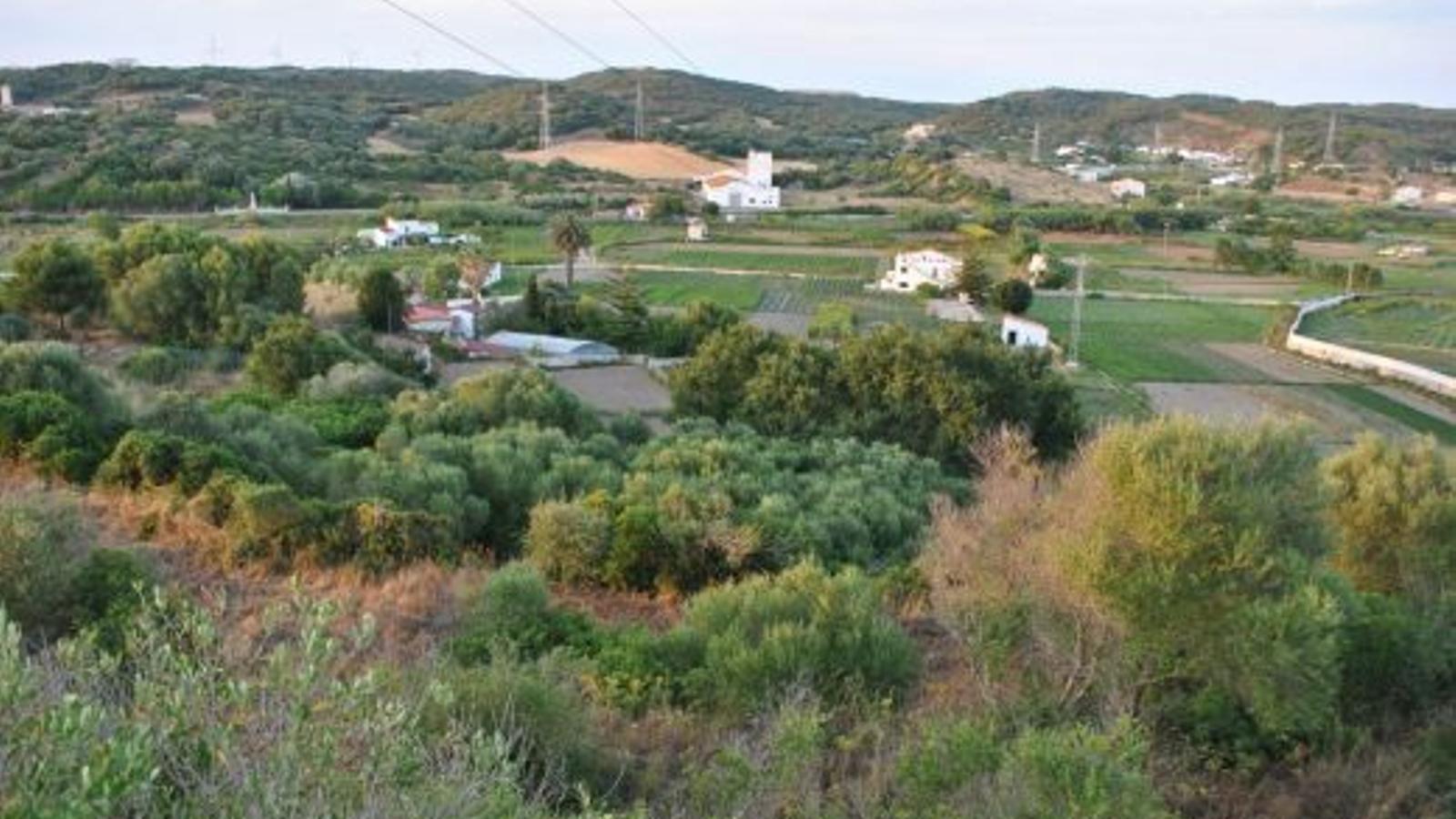 Menorca considera vital acabar amb l'elevat nombre de nitrats que contamina l'aigua.