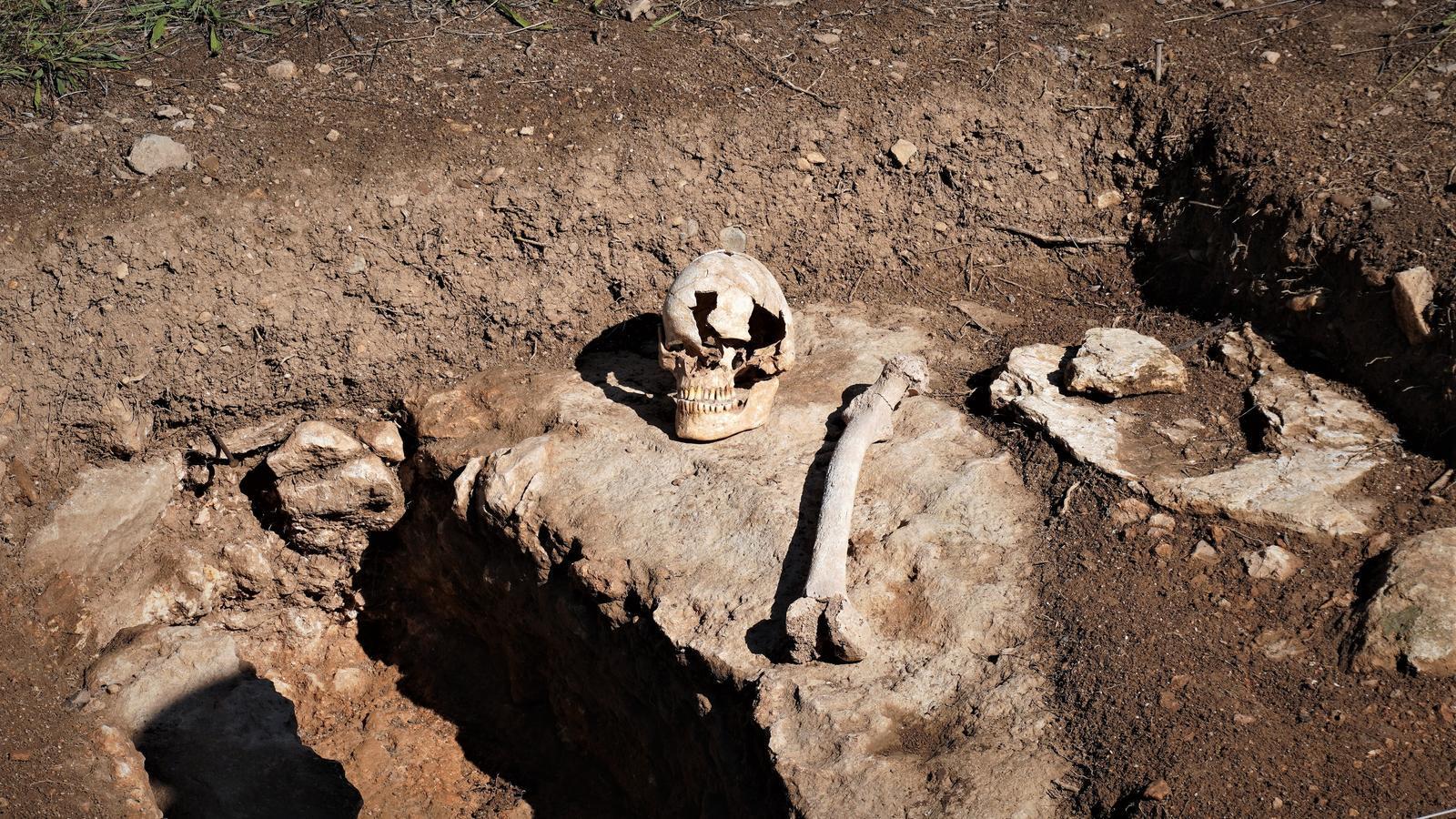 Imatge de les tombes de Son Peretó amb unes de les restes que s'han trobat en aquesta campanya d'excavació