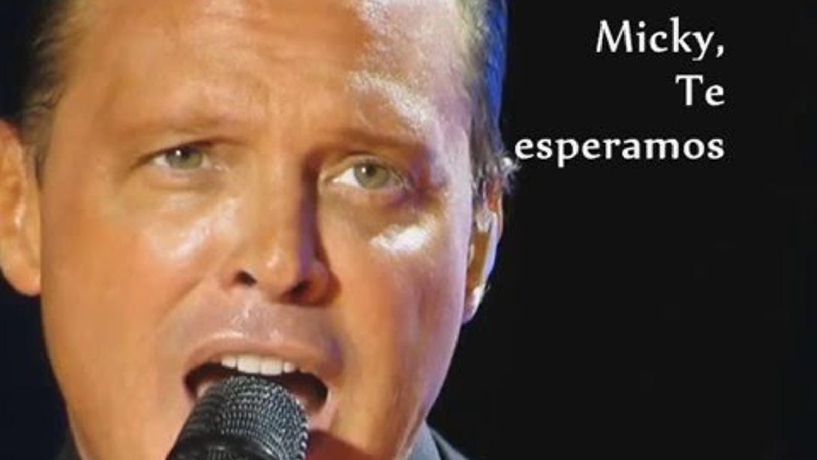 El cantant en un concert a l'Argentina l'any passat