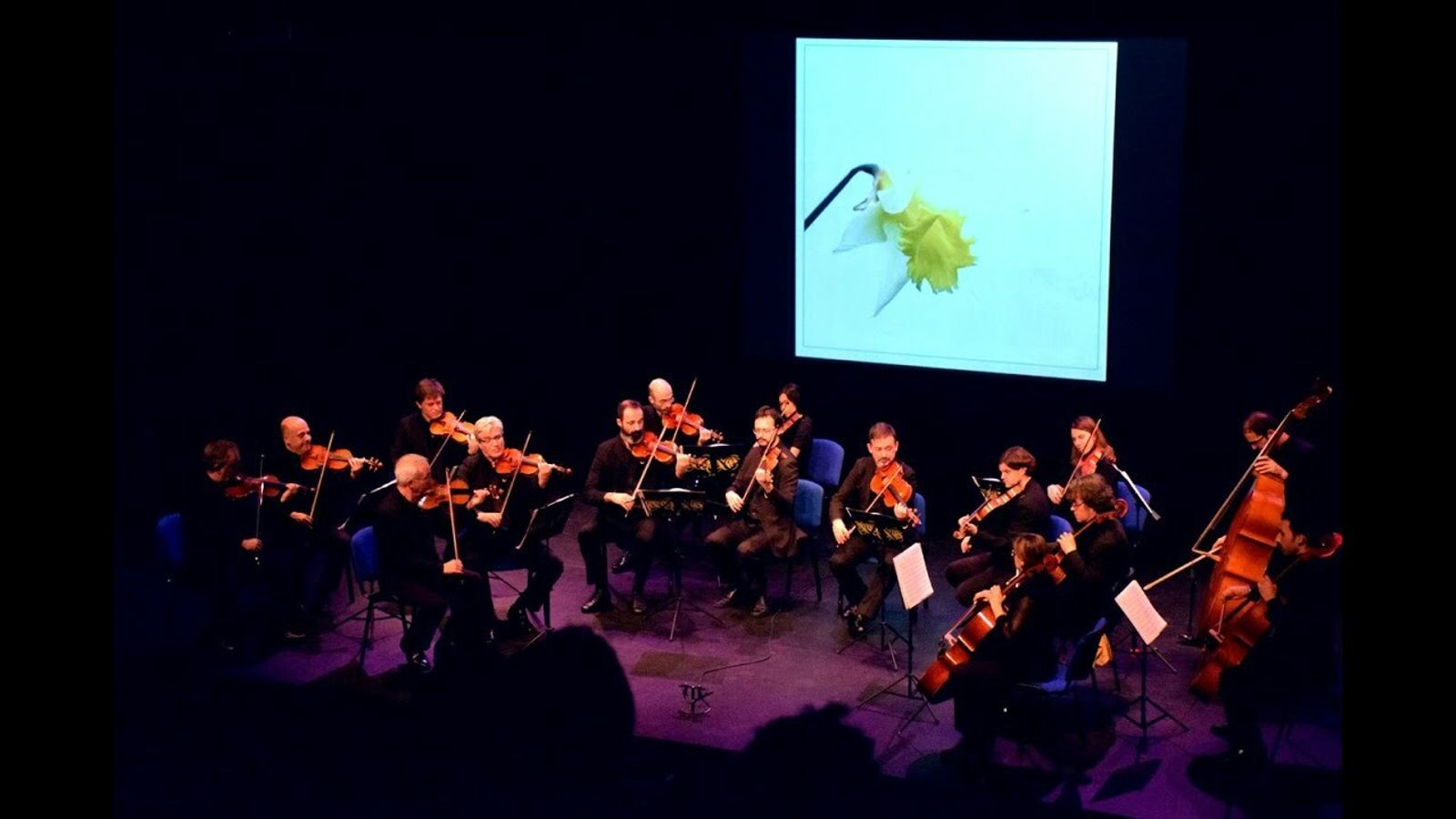 Diàleg entre música i fotografia en la nova temporada de l'ONCA
