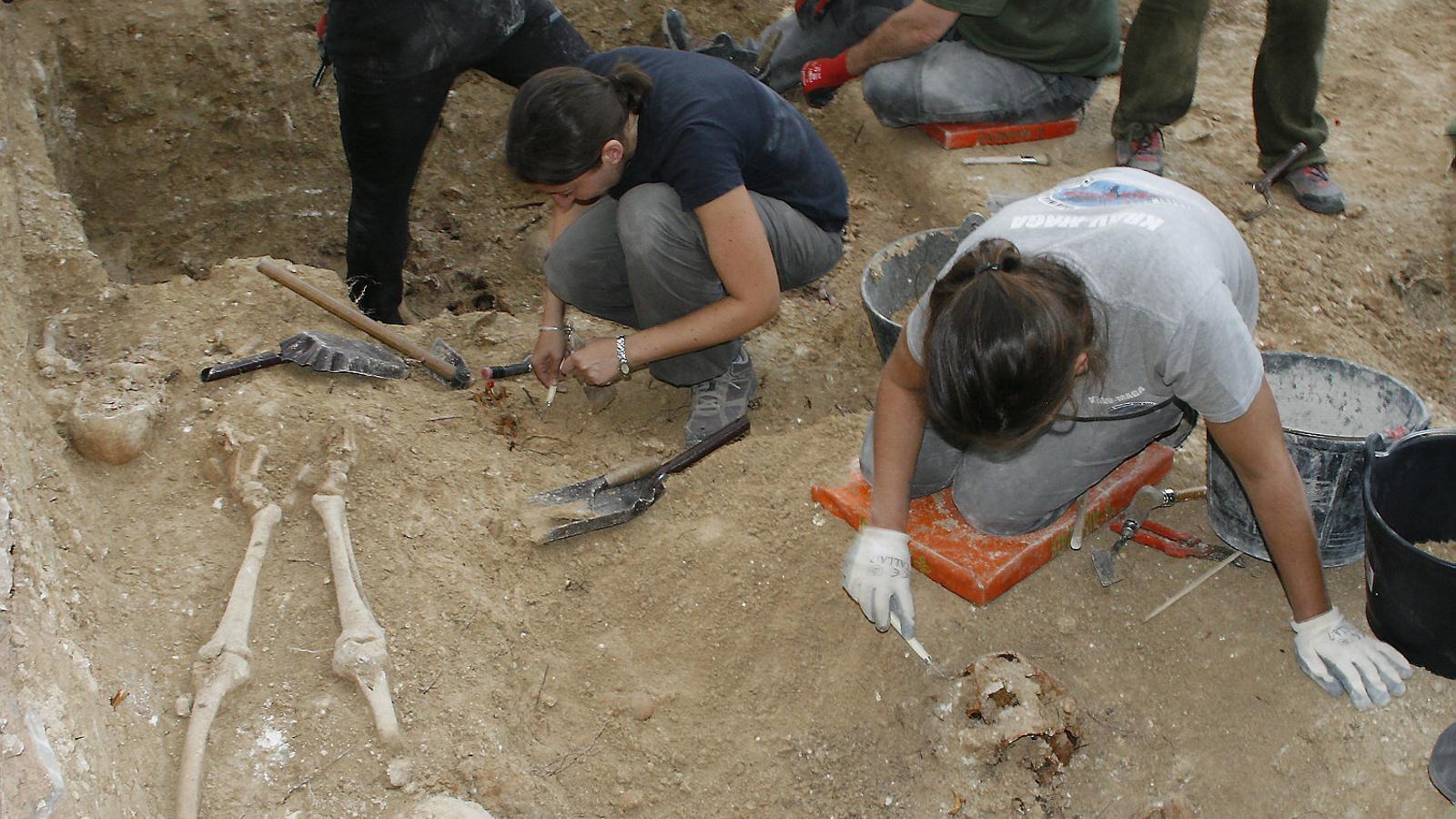 Imatge de l'exhumació de la fossa de Porreres.
