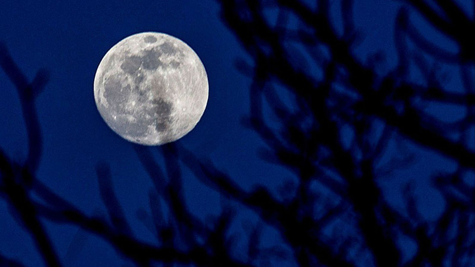 Les vostres fotos de la lluna plena més grossa de l'any