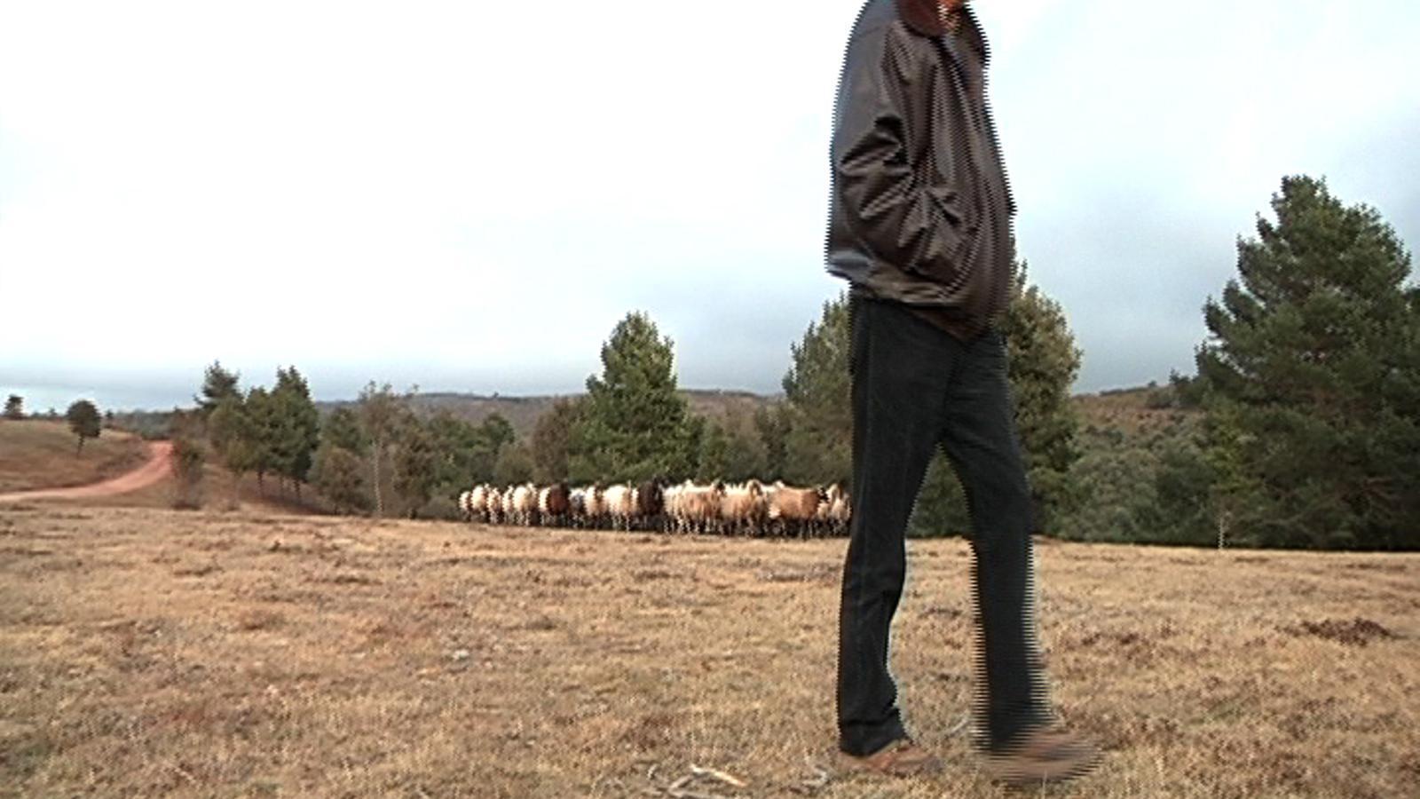 El pastor Fundador: Si no hi ha igualtat, estaria bé tenir la independència