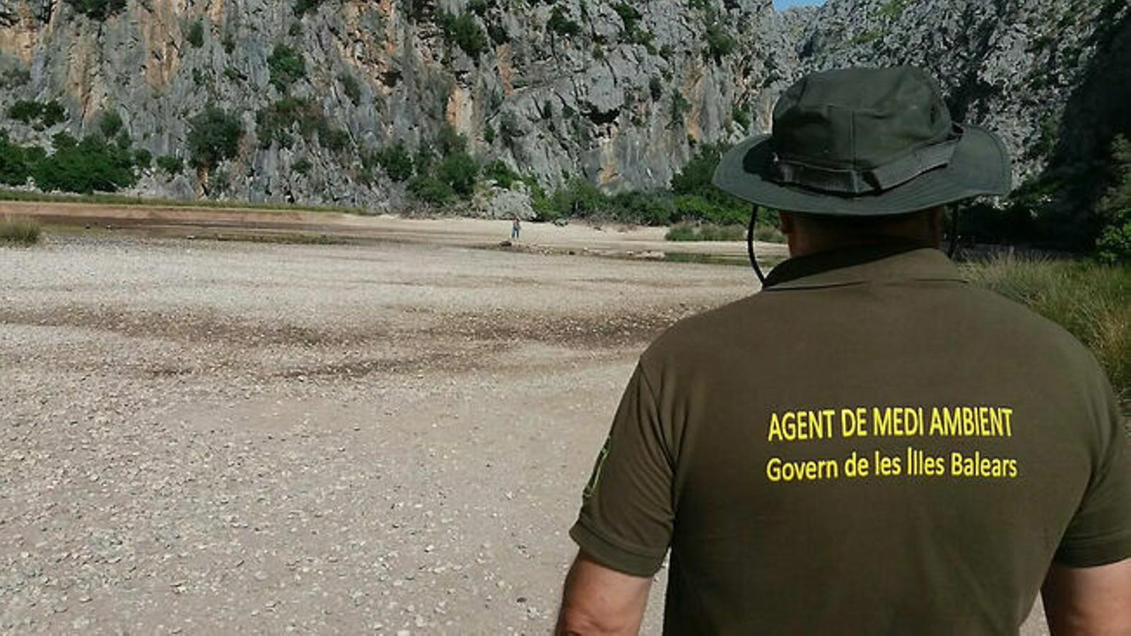 Els agents de Medi Ambient fan més de 300 serveis d'ençà que es declarà l'estat d'alarma