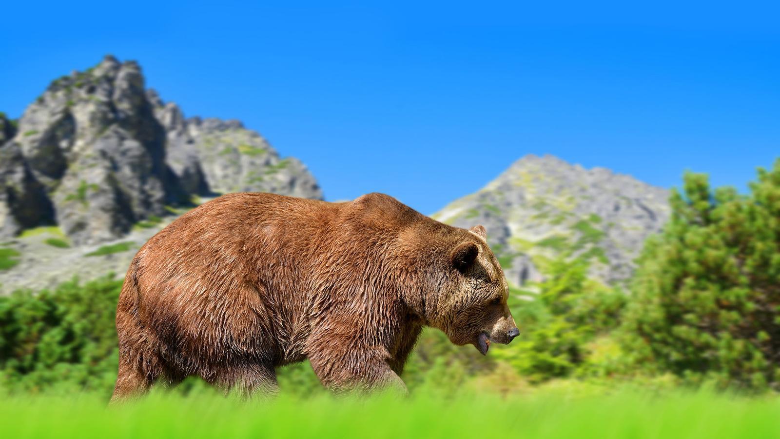 L'Alt Tatra és la primera destinació del rànquing