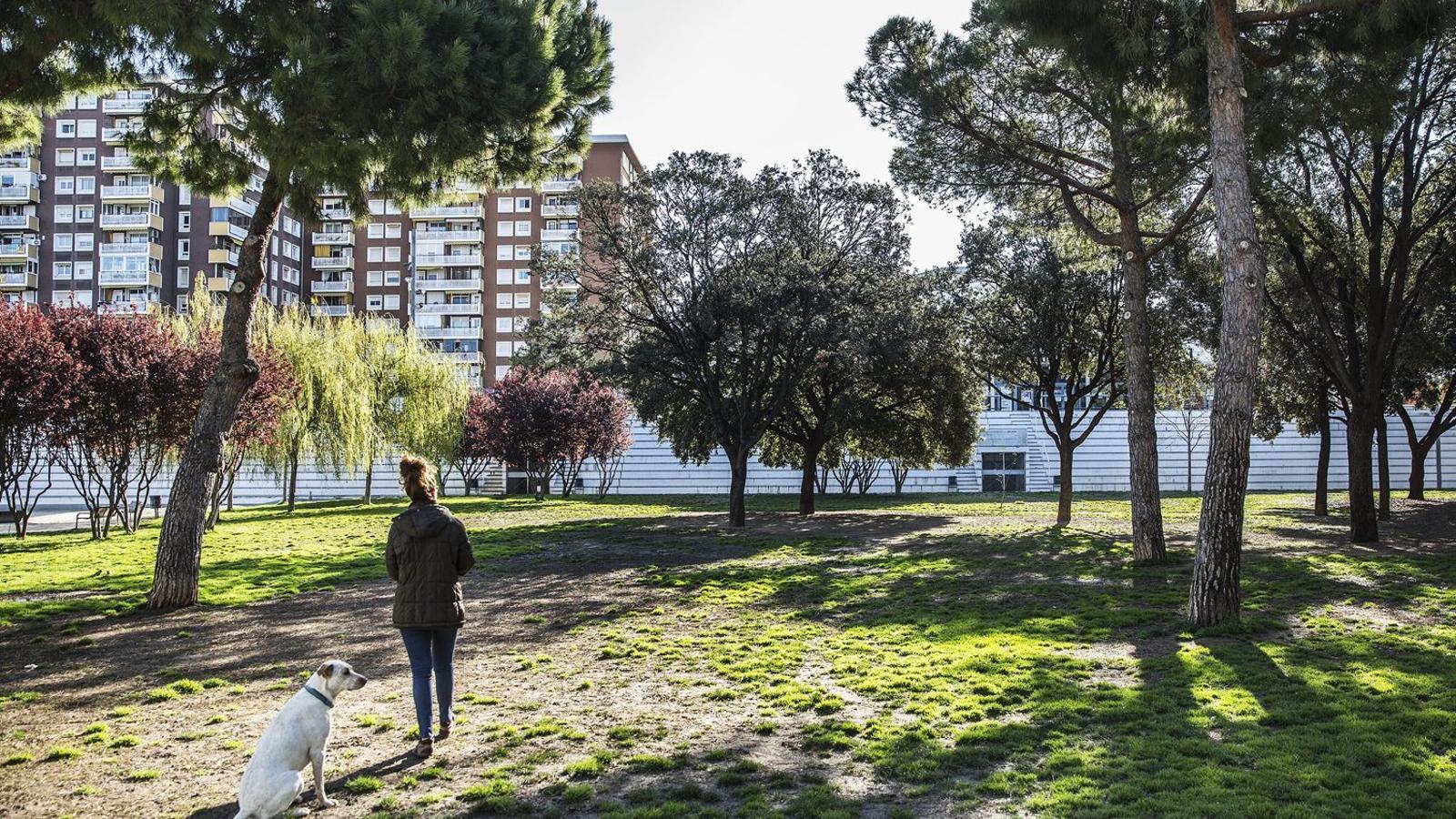 Barcelona reobre la meitat dels parcs