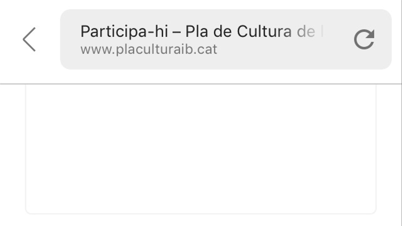 L'eina de participació de la web del pla de cultura no funciona