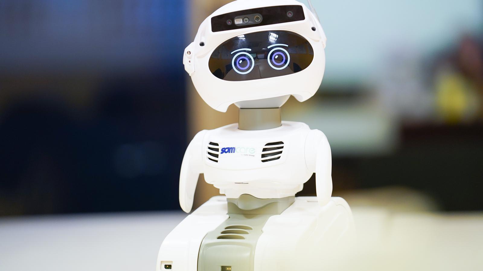 Un robot per combatre l'aïllament de la gent gran