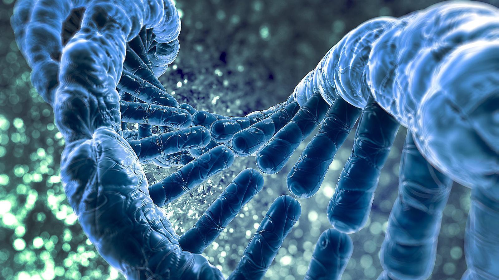 Les cèl·lules es resisteixen a la manipulació genètica