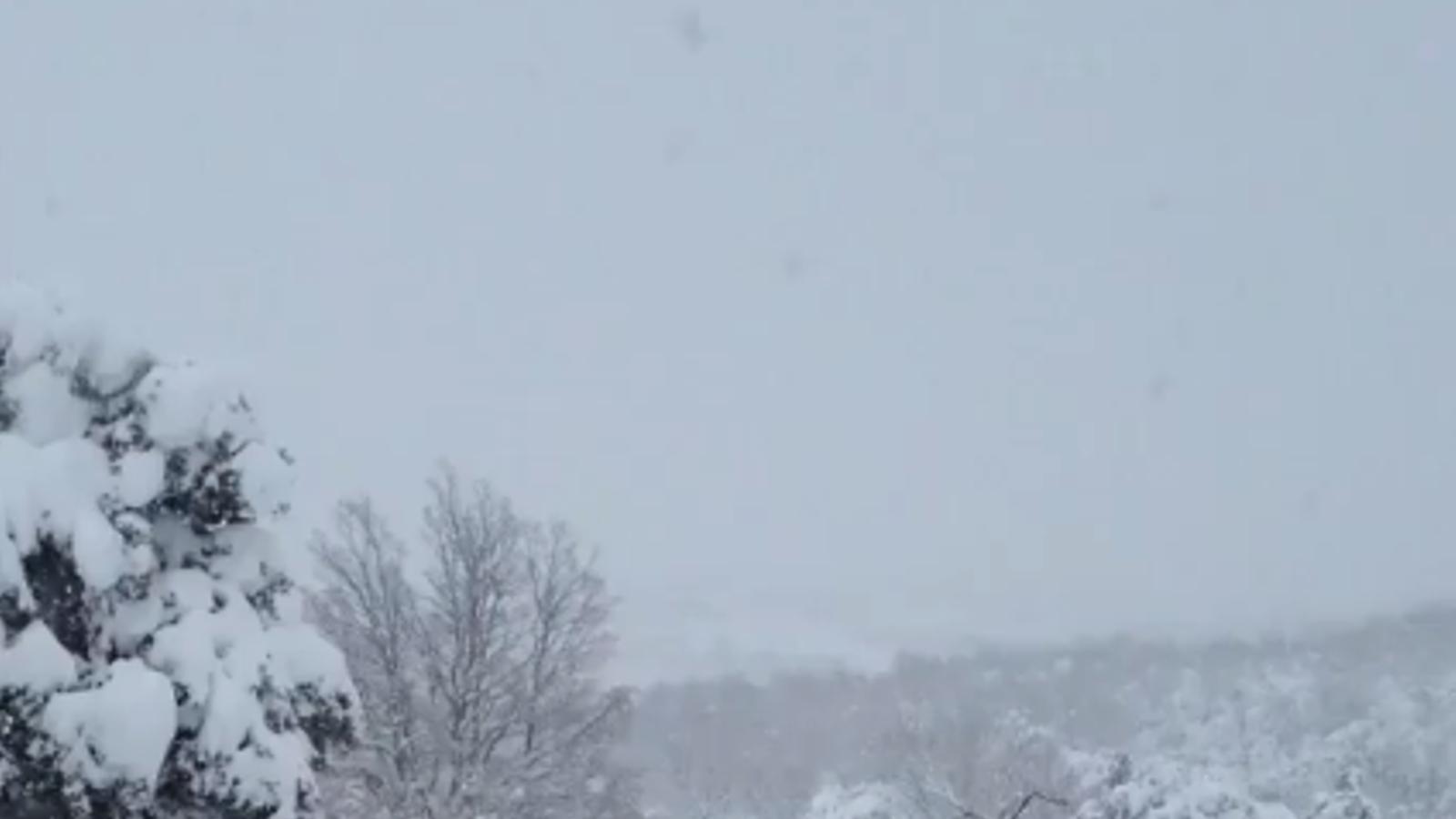 La neu emblanquina el Montseny i acumula gruixos històrics als Ports