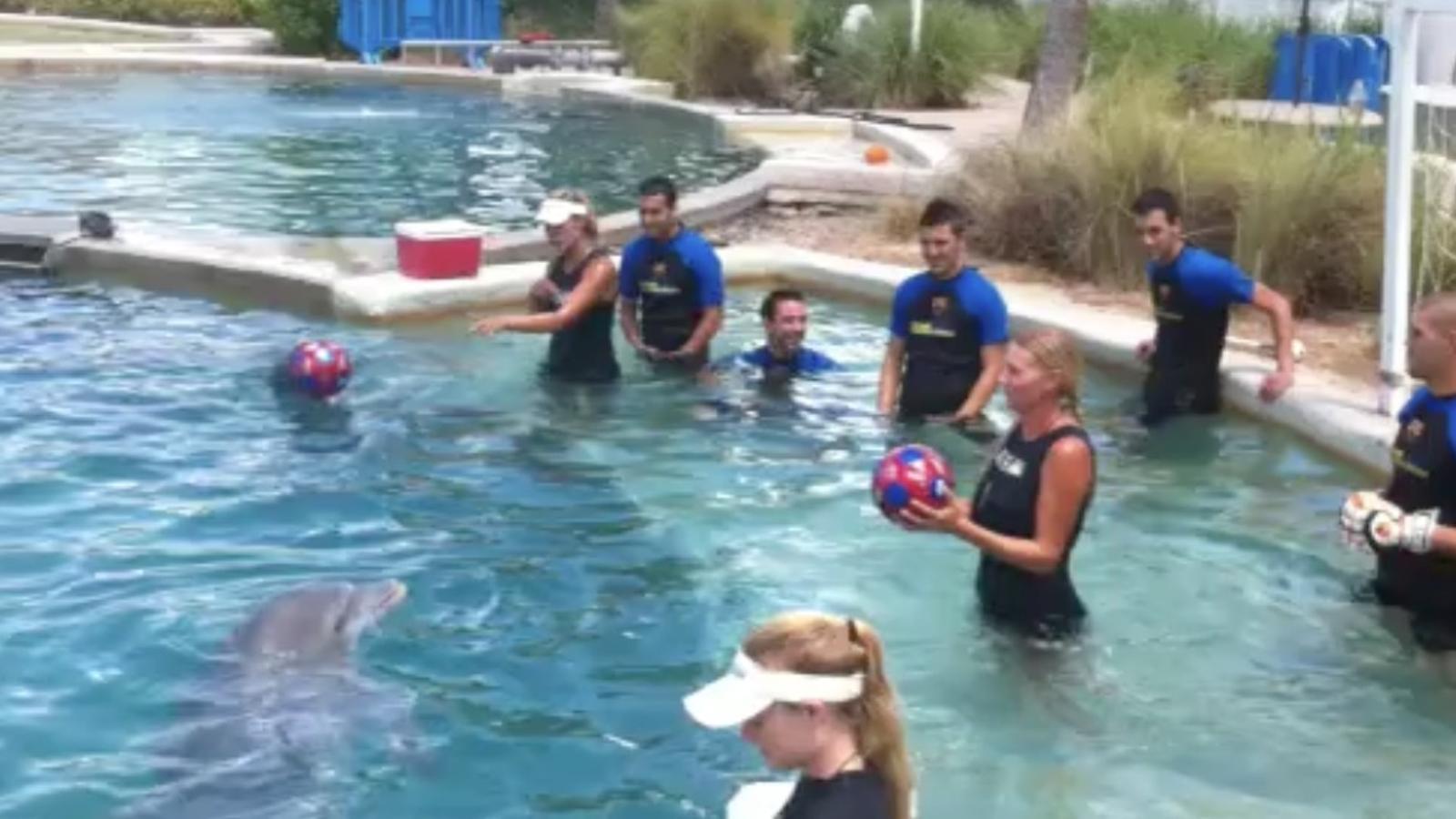 Cinc jugadors del Barça juguen amb dofins