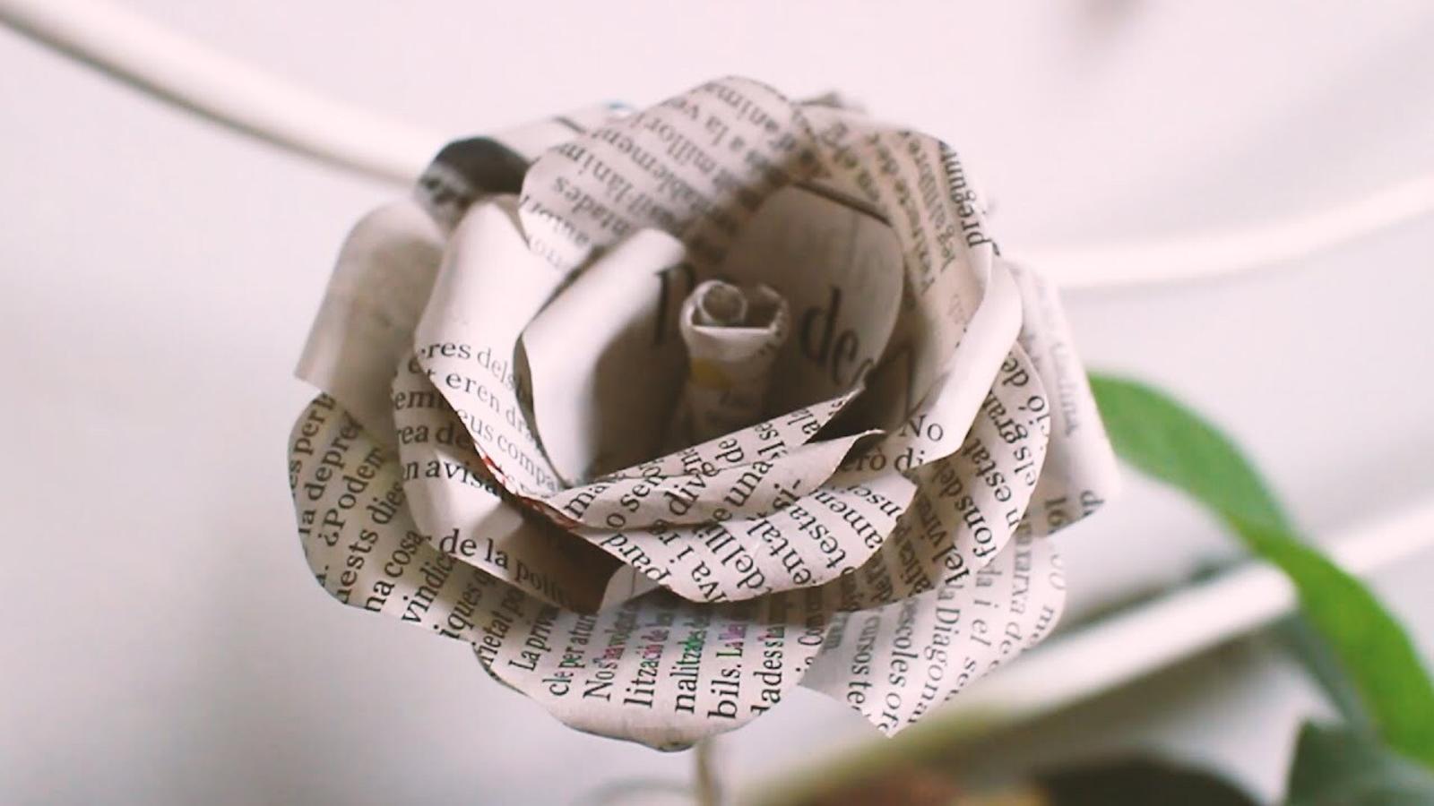 Com fer la rosa social amb paper de diari