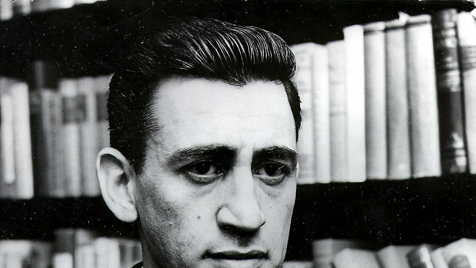 Salinger contra la simplificació