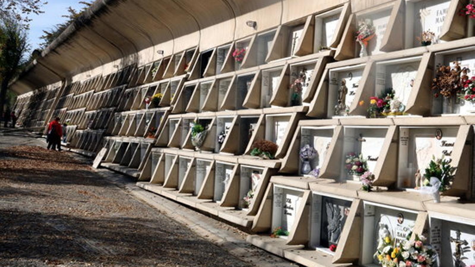 Imatge del cementiri Nou d'Igualada