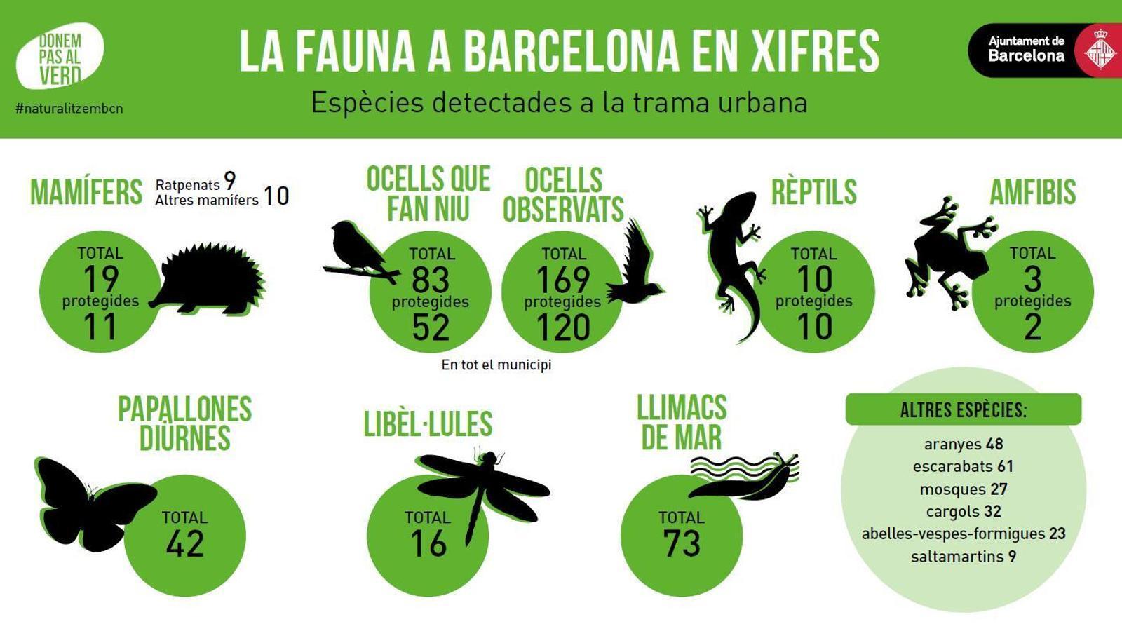 La fauna de Barcelona