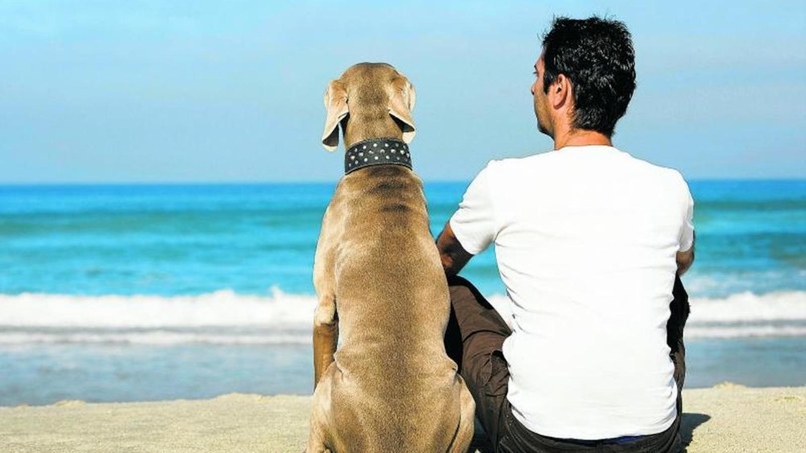 Ca i el seu amo a la platja