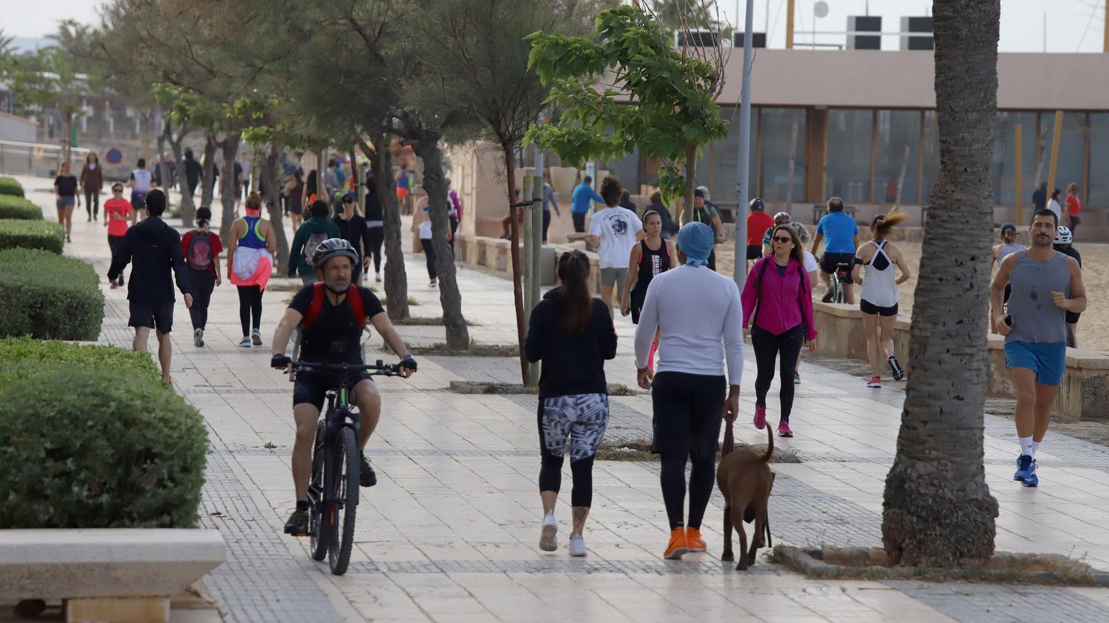 Multen 70 persones que feien esport i incomplien les mesures de seguretat a Palma
