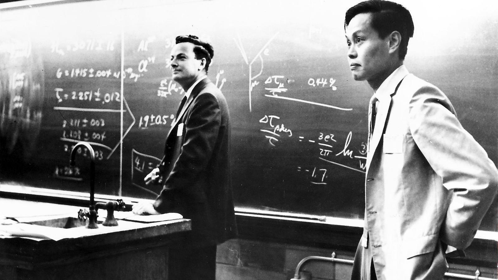Richard Feynman:  100 anys d'irreverència