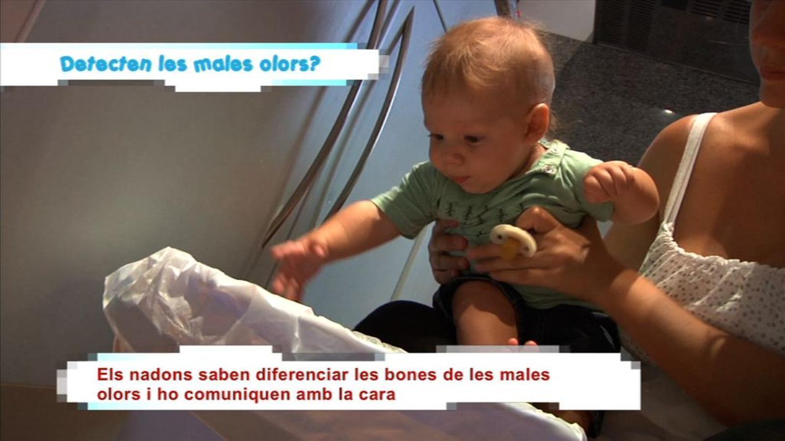 Criatures: Els nadons detecten les males olors?