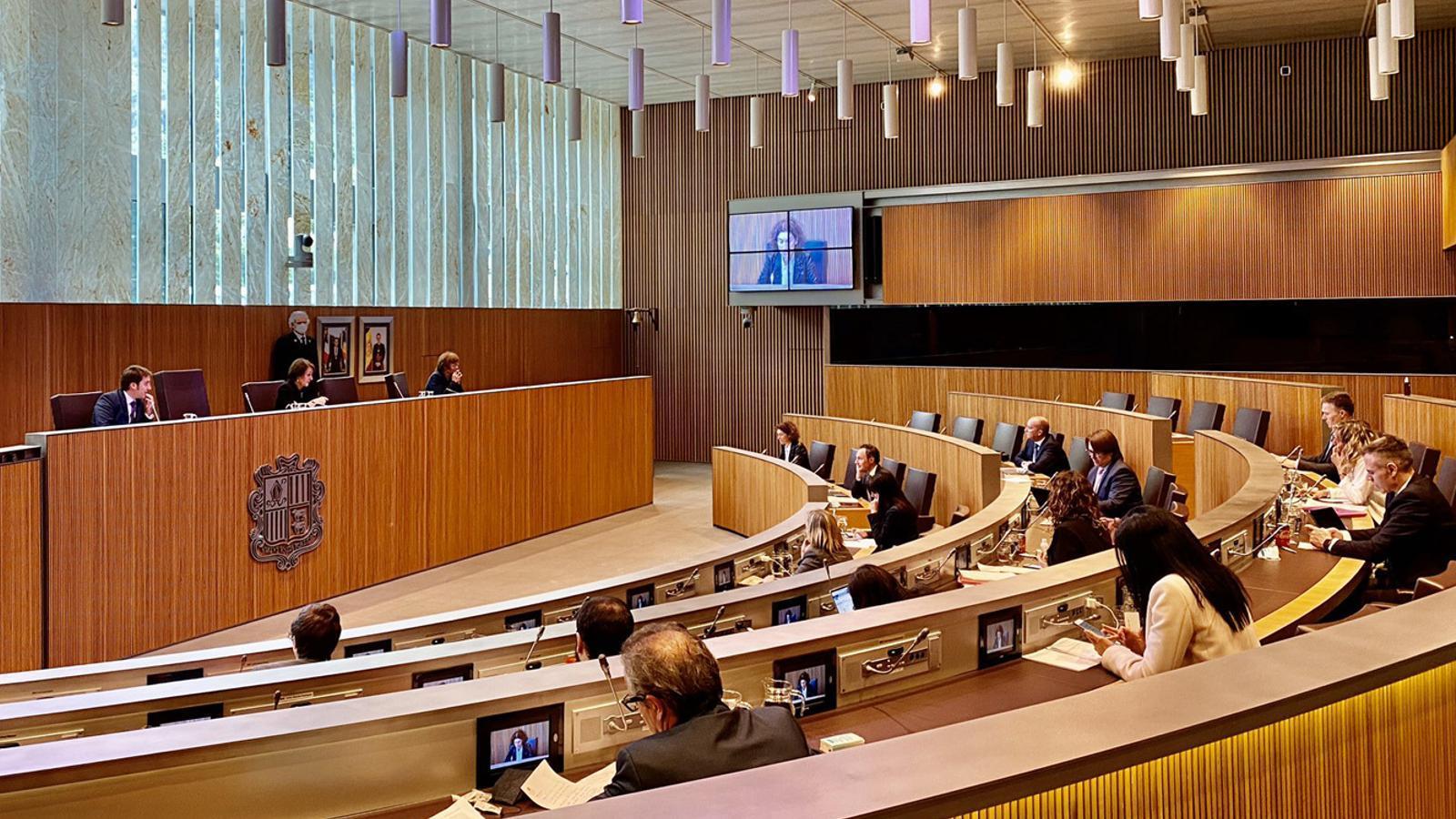 Un moment de la sessió de Consell General celebrada aquest dimecres. / TWITTER CONSELL GENERAL