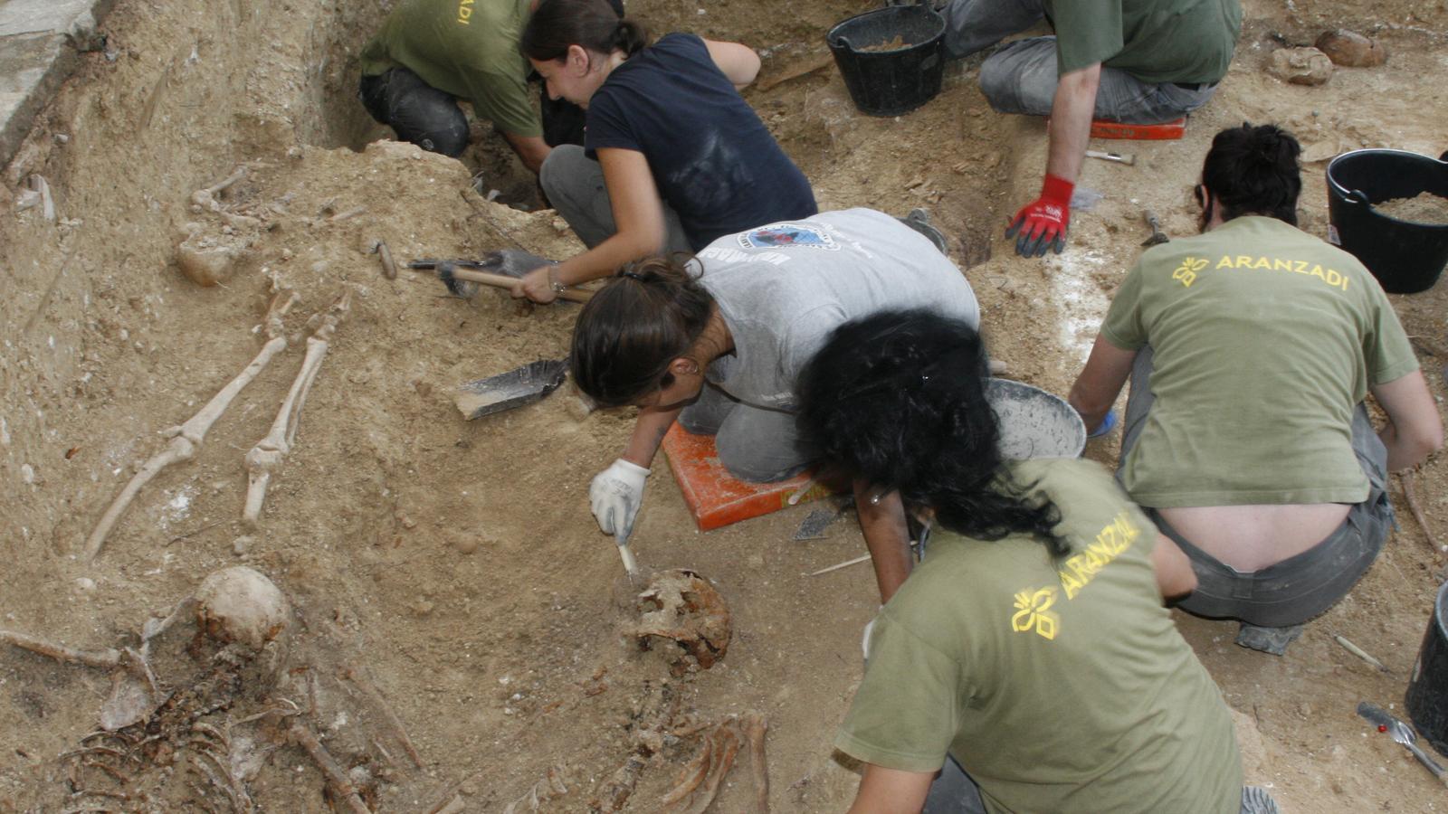 Varis de la desena de cossos que s'han trobat ja en tres fosses diferenciades.