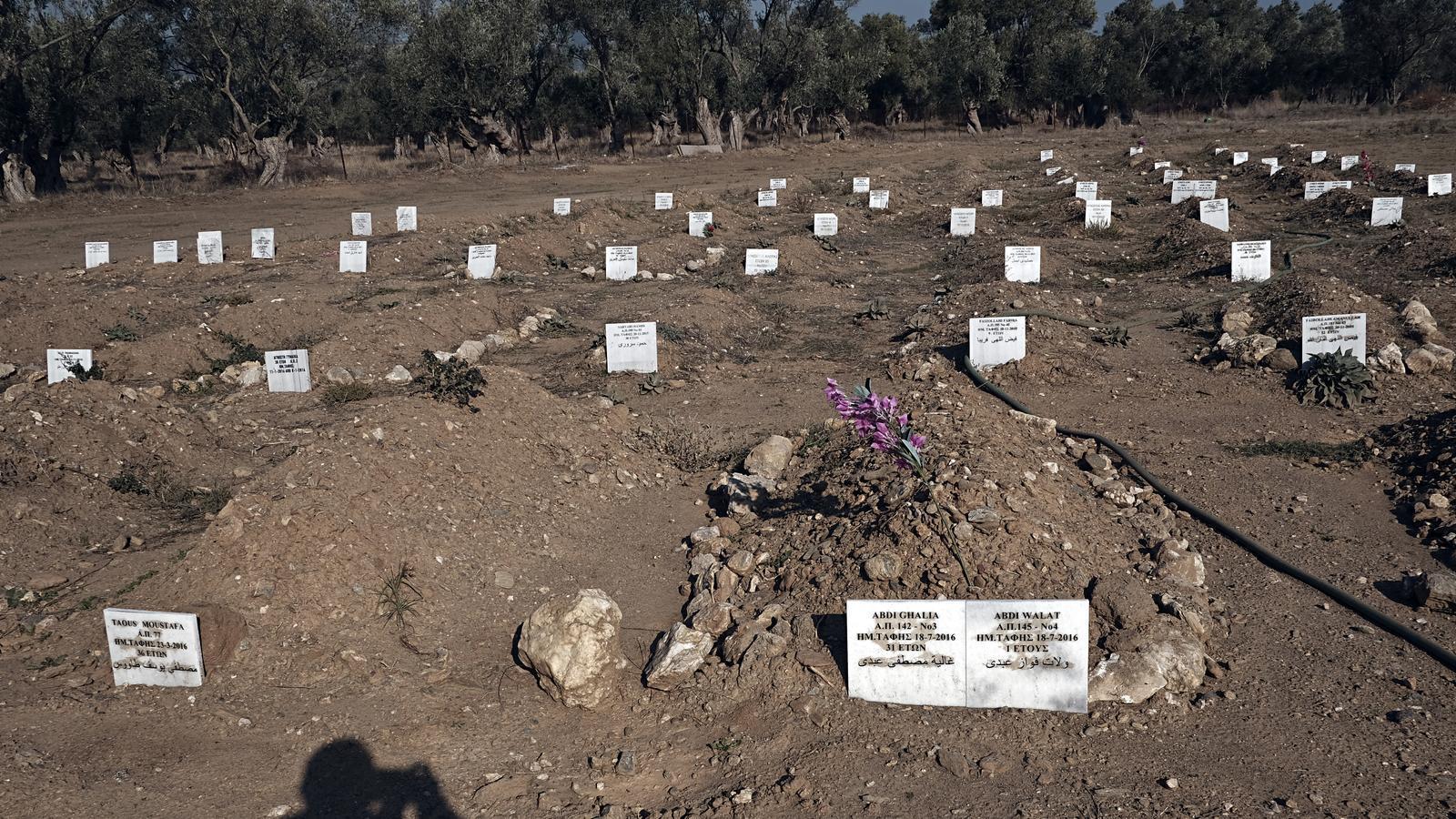 A Kato Tritos hi ha 75 tombes entre oliveres