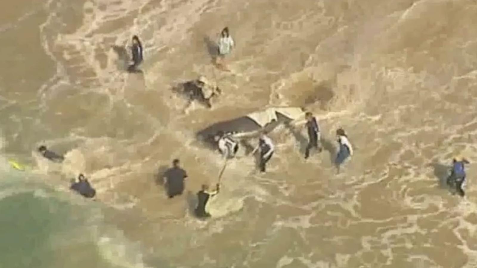 Rescaten una balena encallada en una platja d'Austràlia