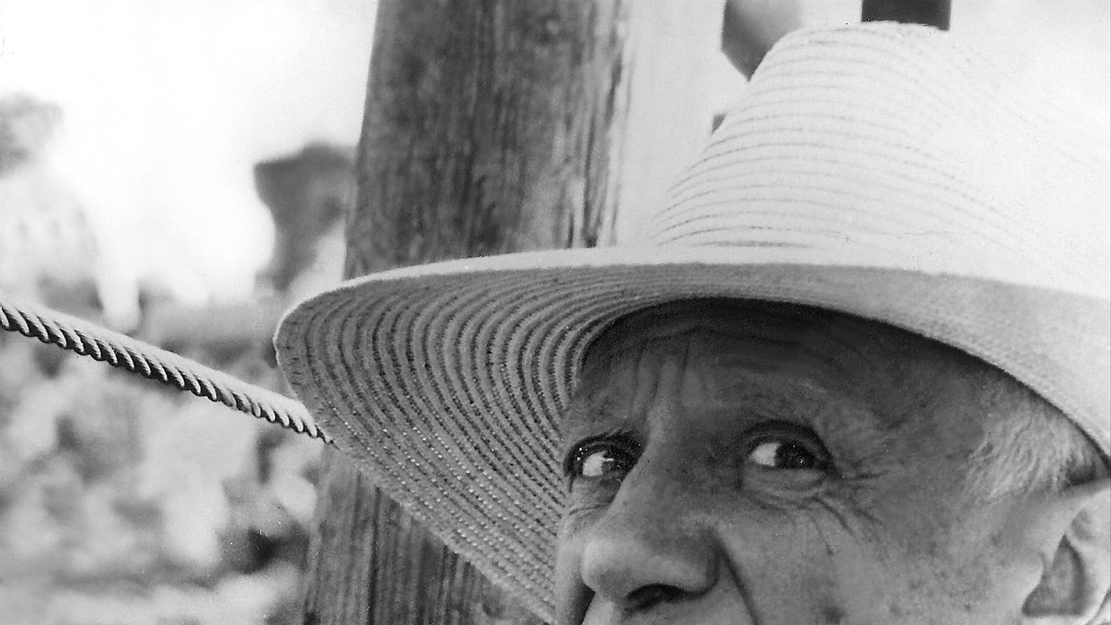 Picasso serà el protagonista de la segona temporada de 'Genius'