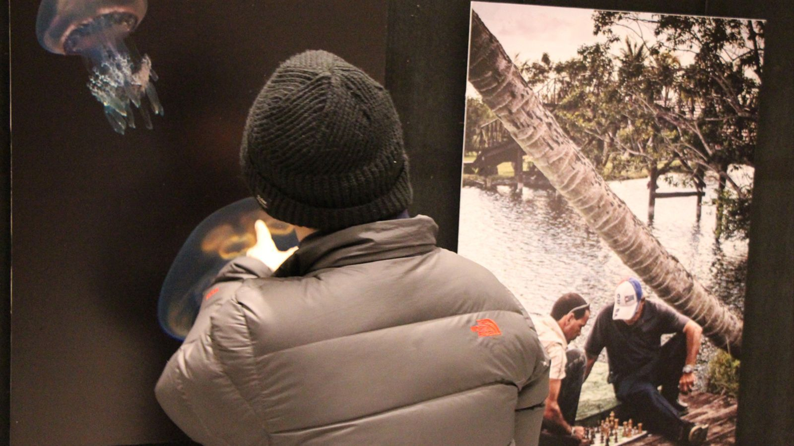 Un espectador mira les fotografies de la mostra col·lectiva. / E. J. M. (ANA)
