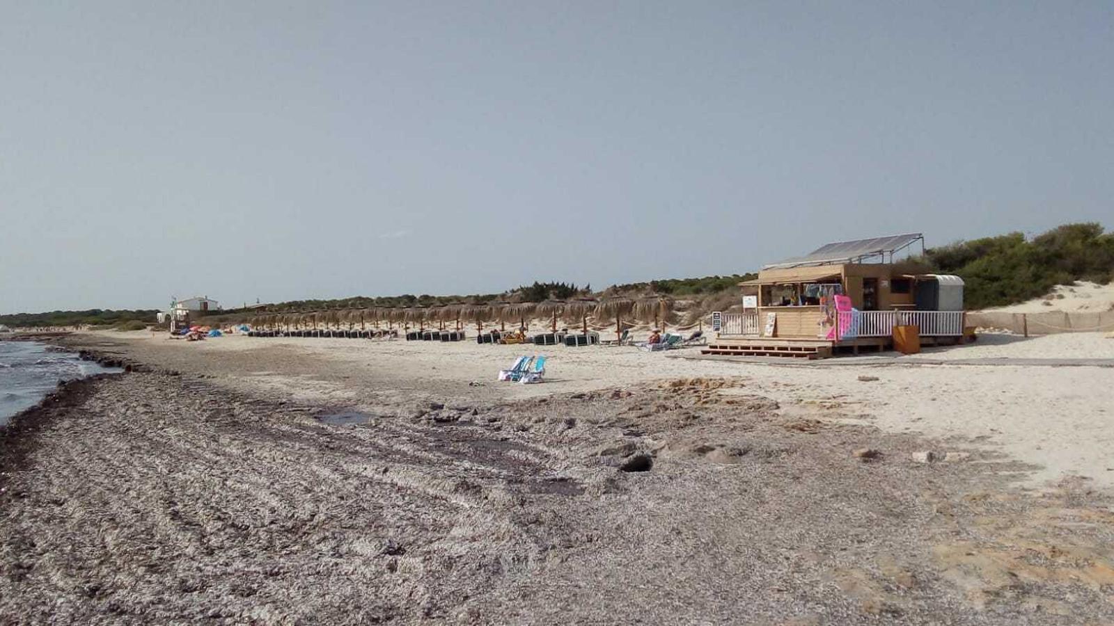 Imatge de la platja d'El Trenc el passat dissabte.