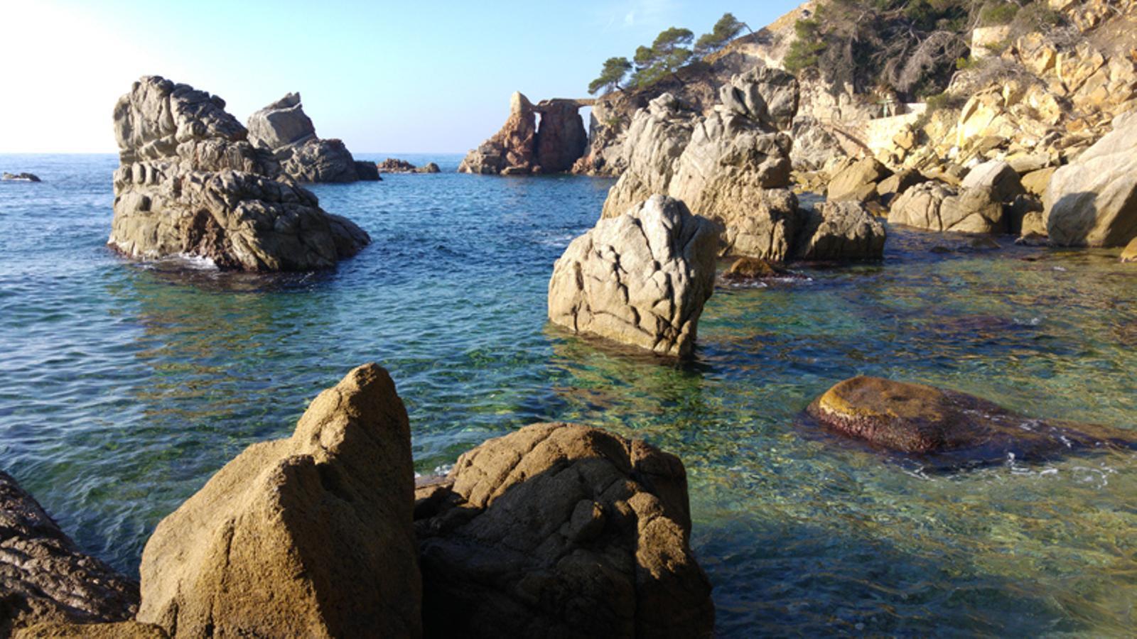 Temperatura del mar r cord per un mes de febrer - Lloret del mar meteo ...